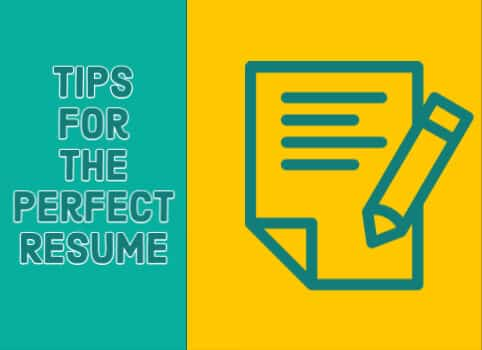 Tips for Perfect Resume_482 x 350